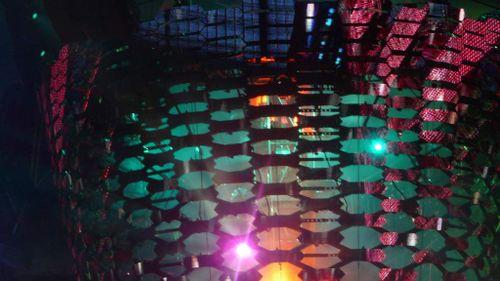 Concert U2 Paris 12 juillet 2009 129
