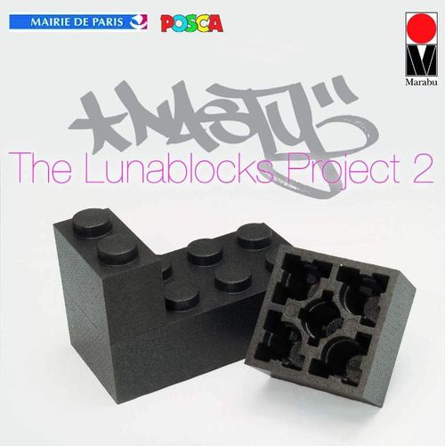 Nasty LUNABLOCK PROJECT 2